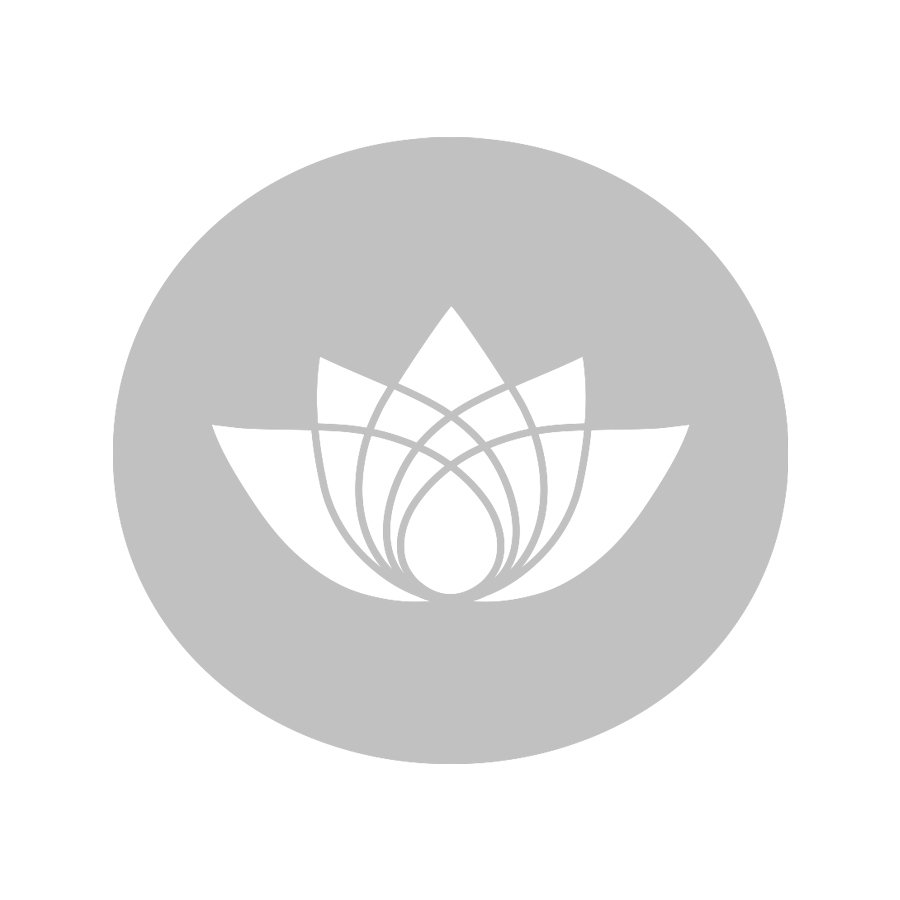 Teedose Japan Kirschbaumrinde Geschenkset