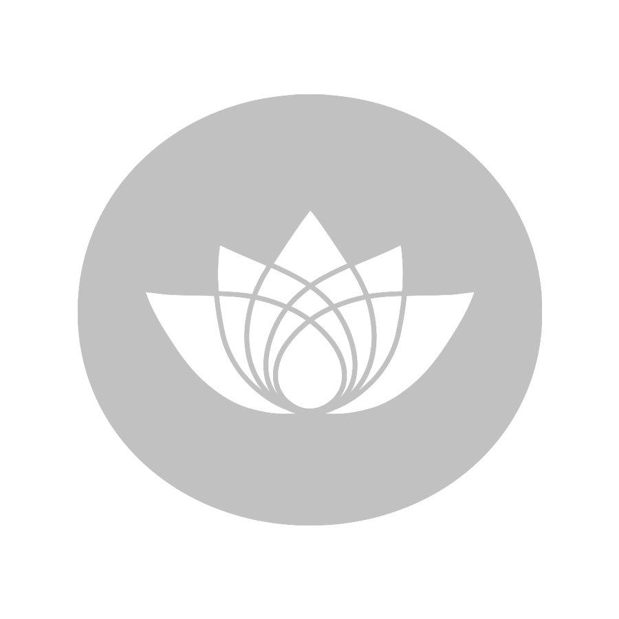 Die Teeblätter des Kamairicha  Tulsi Ginger