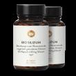 Bio Silizium Organisch Gebunden 90mg Hochdosiert