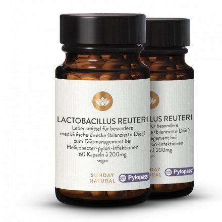 Lactobacillus Reuteri Pylopass®  + B12 MH3A-D® Kapseln