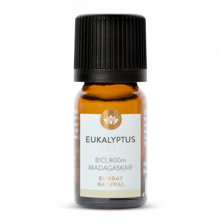 Eukalyptusöl Bio 800m