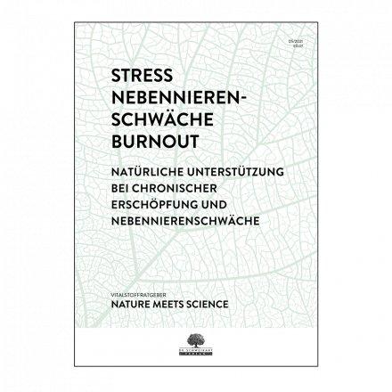 Stress & Burnout