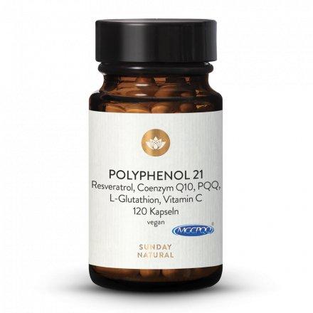 Polyphenol 21 Komplex