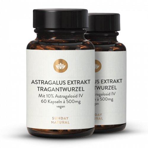 Astragalus Extrakt Kapseln