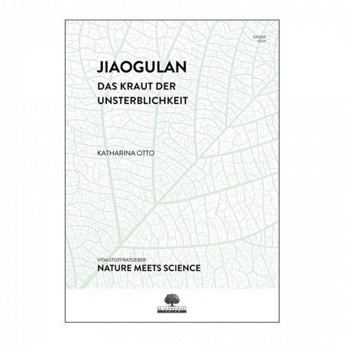 Jiaogulan