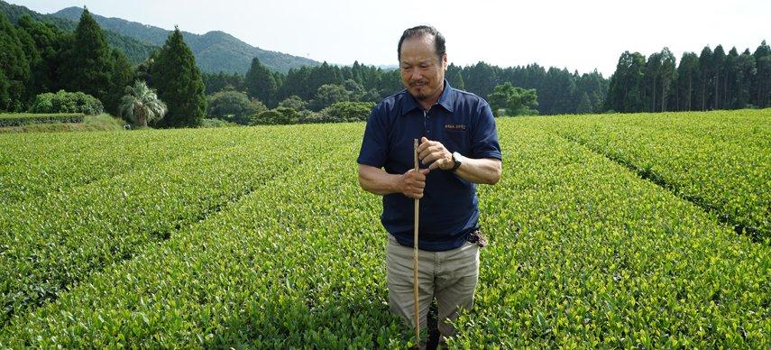 Sakamoto Bio Teegarten